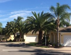 Wanted: House or Courtyard Villa to rent Jan-Mar 2020 The Villages Florida