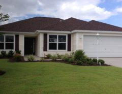 Designer home for Rent – 6 weeks  Jan. & Feb. 2010 The Villages Florida