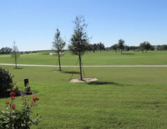Rental Home (golf course view) The Villages Florida